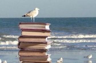 Goéland et livres