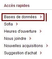 """Lien """"Bases de données"""" dans la page """"Accueil"""" du site"""