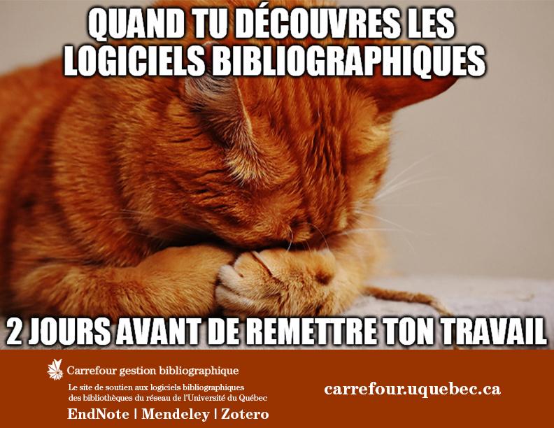 LGB_Meme_Carrefour